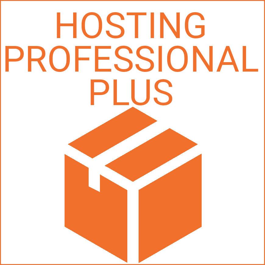 Hosting Professional - Immagine